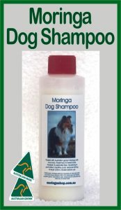 Moringa Farm Australia Moringa Dog (pet) Concentrated Shampoo